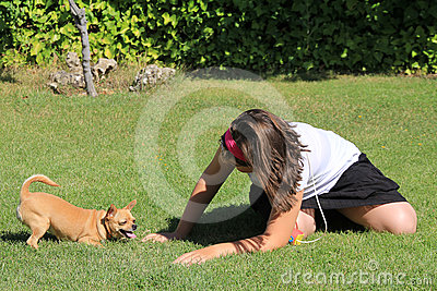 Chihuahua playing with a girl in the garden