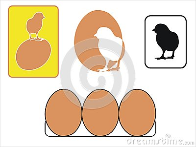 Chikens and eggs
