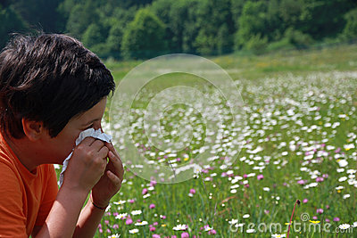 Child with an allergy to pollen while you blow your nose with a
