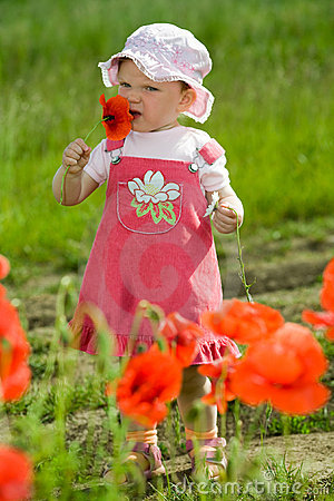 Free Child Amongst Red Flowers Stock Photos - 5703133