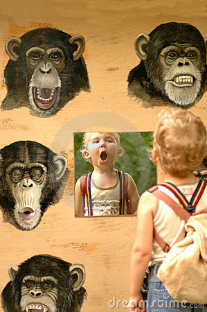Free Child And Ape. Stock Image - 11895641