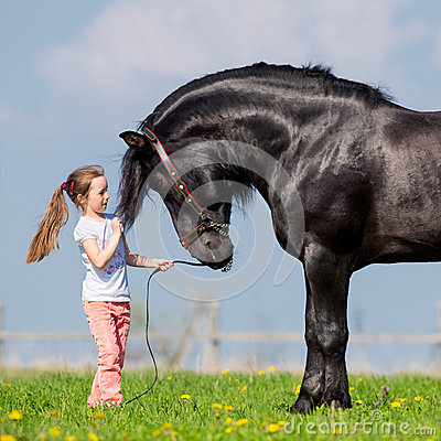 Free Child And Big Black Horse In Field Royalty Free Stock Photo - 34450675