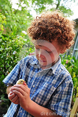 Free Child And Chick Stock Images - 26918204