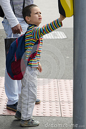 Free Child At Pedestrian Road  Crossing Royalty Free Stock Photo - 48841375