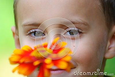 Child behind red flower