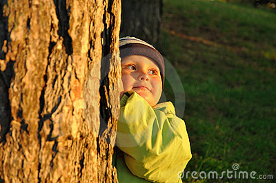 Child behind tree