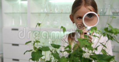 Child in Chemistry Lab, School Science Experiment Educational Biology  Project 4K