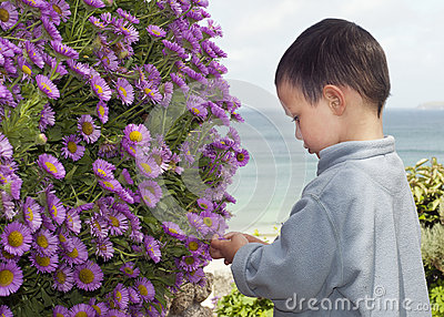 Child in the coastal garden