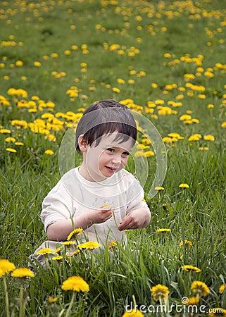 Child in dandelions