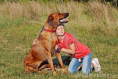 Child and dog - Happy Friendship