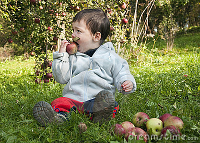 Child eating apple