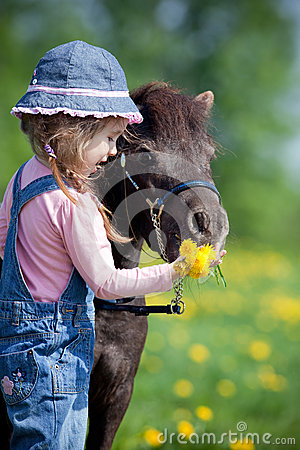 Free Child Feeding A Small Horse In Field Stock Photography - 38523542