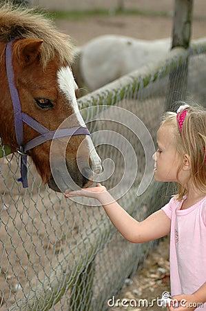 Free Child Feeding Pony Royalty Free Stock Image - 2026986