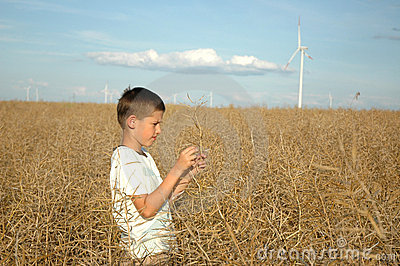 Child on the field ofwind power stations