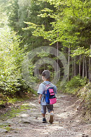 Child in forest