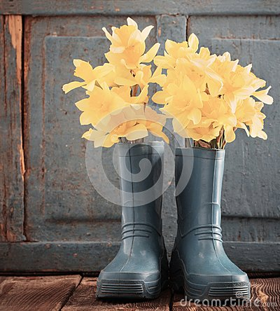 Free Child Garden Shoes With Spring Flowers Stock Photography - 110922242