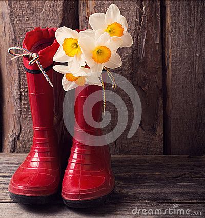 Free Child Garden Shoes With Spring Flowers Royalty Free Stock Photo - 53501775
