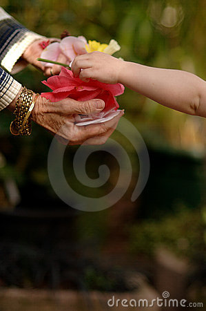 Child Gifting Flowers