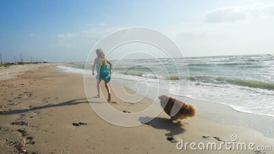 Child girl with the dog on a sea shore stock video footage