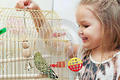 Child girl playing with budgies