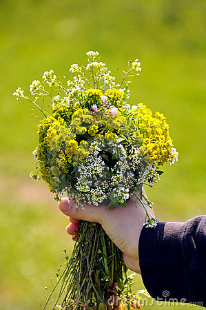 Child hand with flowers