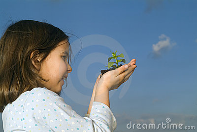 Child hands holding plant