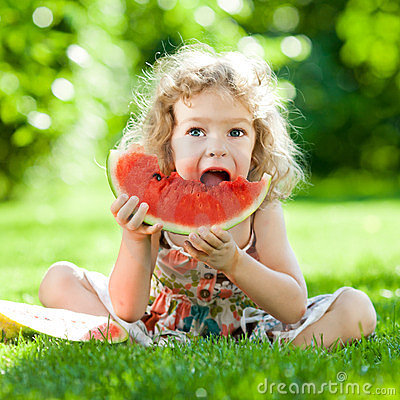 Free Child Having Picnic In Park Stock Photo - 23437290