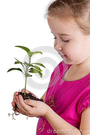 Child holding green plant on white
