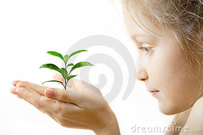 Child holding a sprout