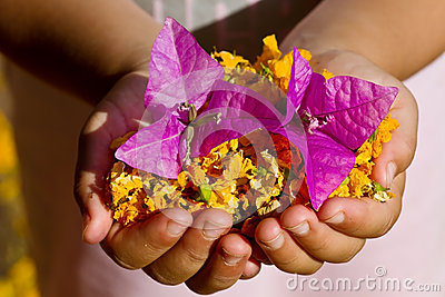 Child holding yellow and purple flowers