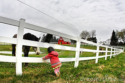 Child and horse staring