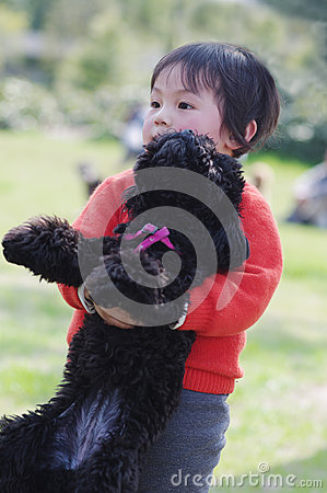 Child hug poodle