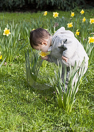Free Child In Flowers Stock Photography - 17925612