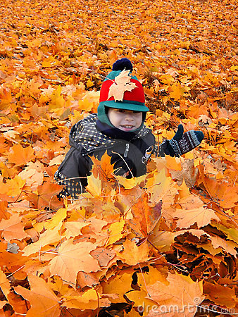 Free Child In The Leaves Royalty Free Stock Images - 282639