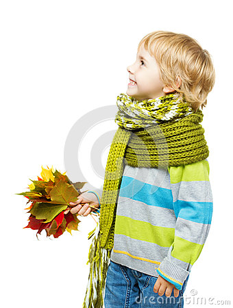 Free Child In Woolen Scarf Holding Maple Leaves Royalty Free Stock Photography - 43801597