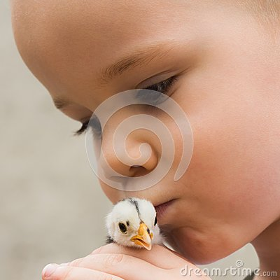 Free Child Kissing Little Chick Bird Stock Photos - 106156073