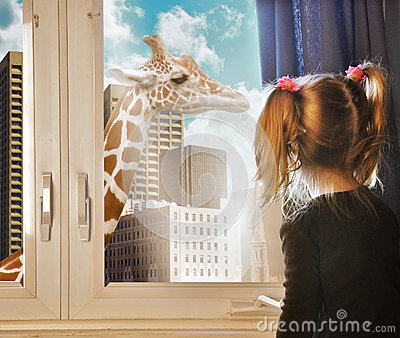 Child looking at Giraffe Dream in Window