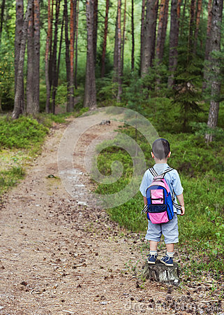 Free Child On Forest Road Royalty Free Stock Images - 38930449