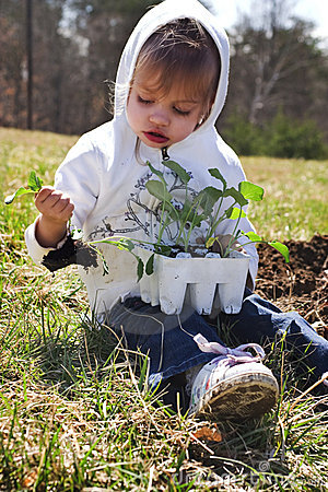 Child planting vegetables