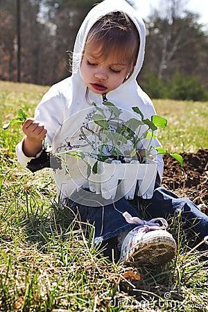 Child planting vegetables