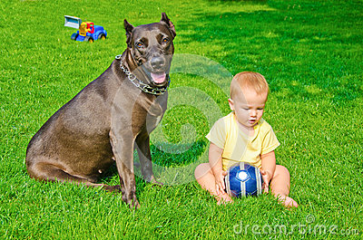 A child plays with a dog and ball