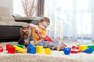 Child plays with dog and building blocks at home