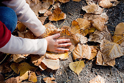 Child plying with leaves