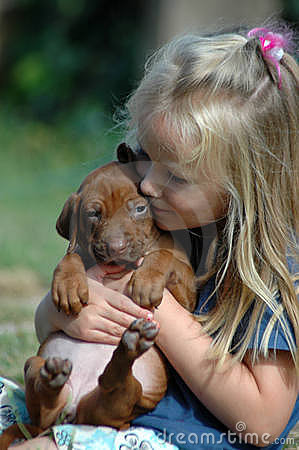 Free Child Puppy Love Stock Photography - 19684542