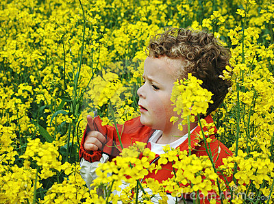 Child in Rapeseed