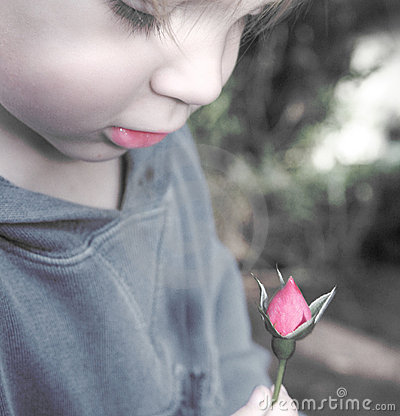 Child with rose bud