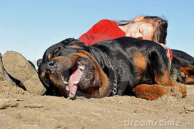 Child and rottweiler
