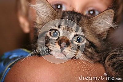 Child s kitten