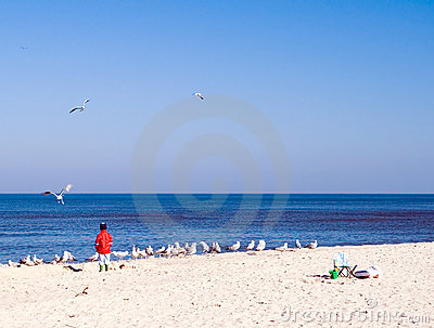 Child and sea gulls.