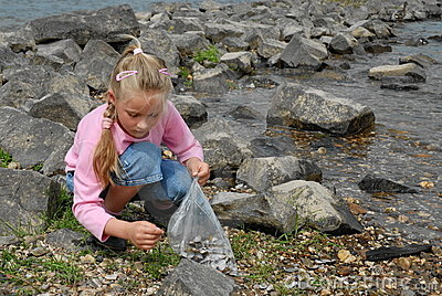 Child seeking seashells